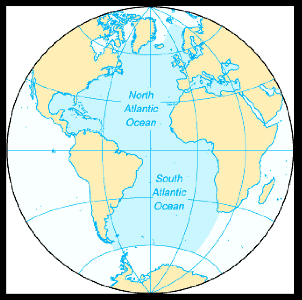 Животные атлантического океана картинки и названия 5