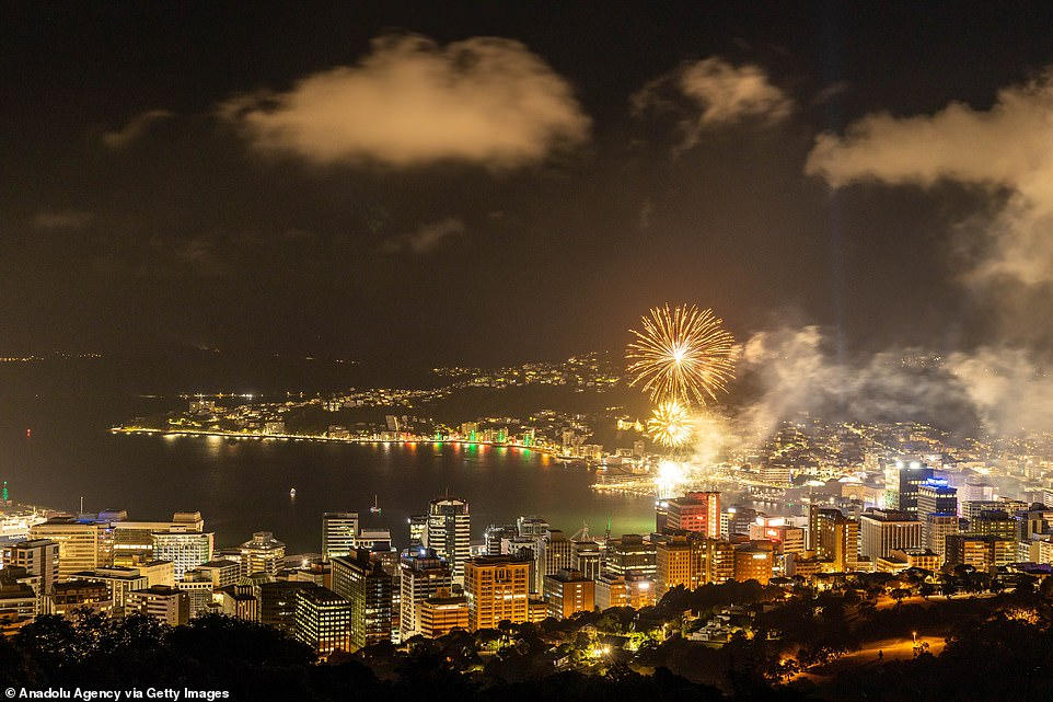 Fireworks light up the sky during the new year celebrations in Wellington, New Zealand